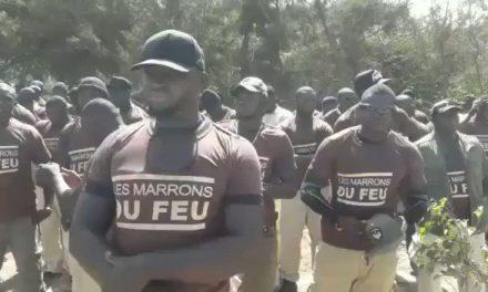 Les Marrons du feu assiègent le domicile du président Macky Sall